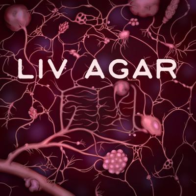 Liv Agar