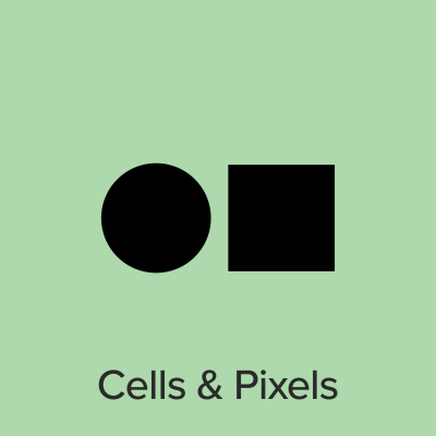 Cells and Pixels
