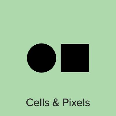 Cells and Pixels