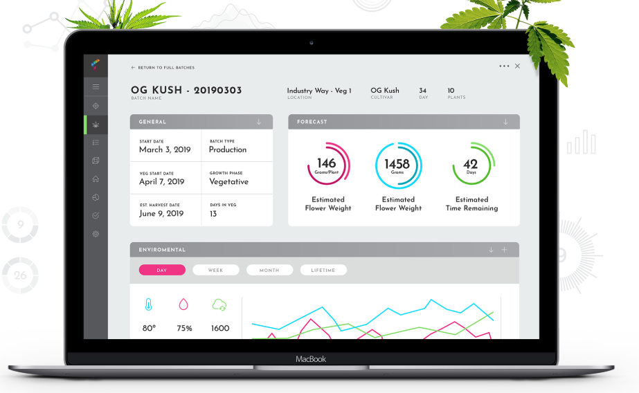 Wholesale cannabis software buyers guide