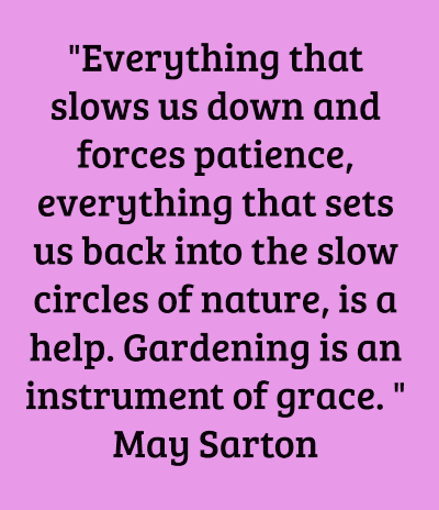 """Everything that slows us down and forces patience, everything that sets us back into the slow circles of nature, is a help. Gardening is an instrument of grace. "" May Sarton"