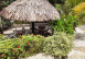 areas comunes - Ecohotel Manakin Tayrona by DOT Collection