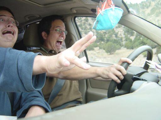 ARCA - Seguro de auto - Mal Copiloto - Blog de Seguros