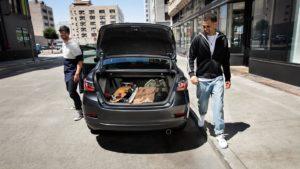 artículos seguridad en el auto