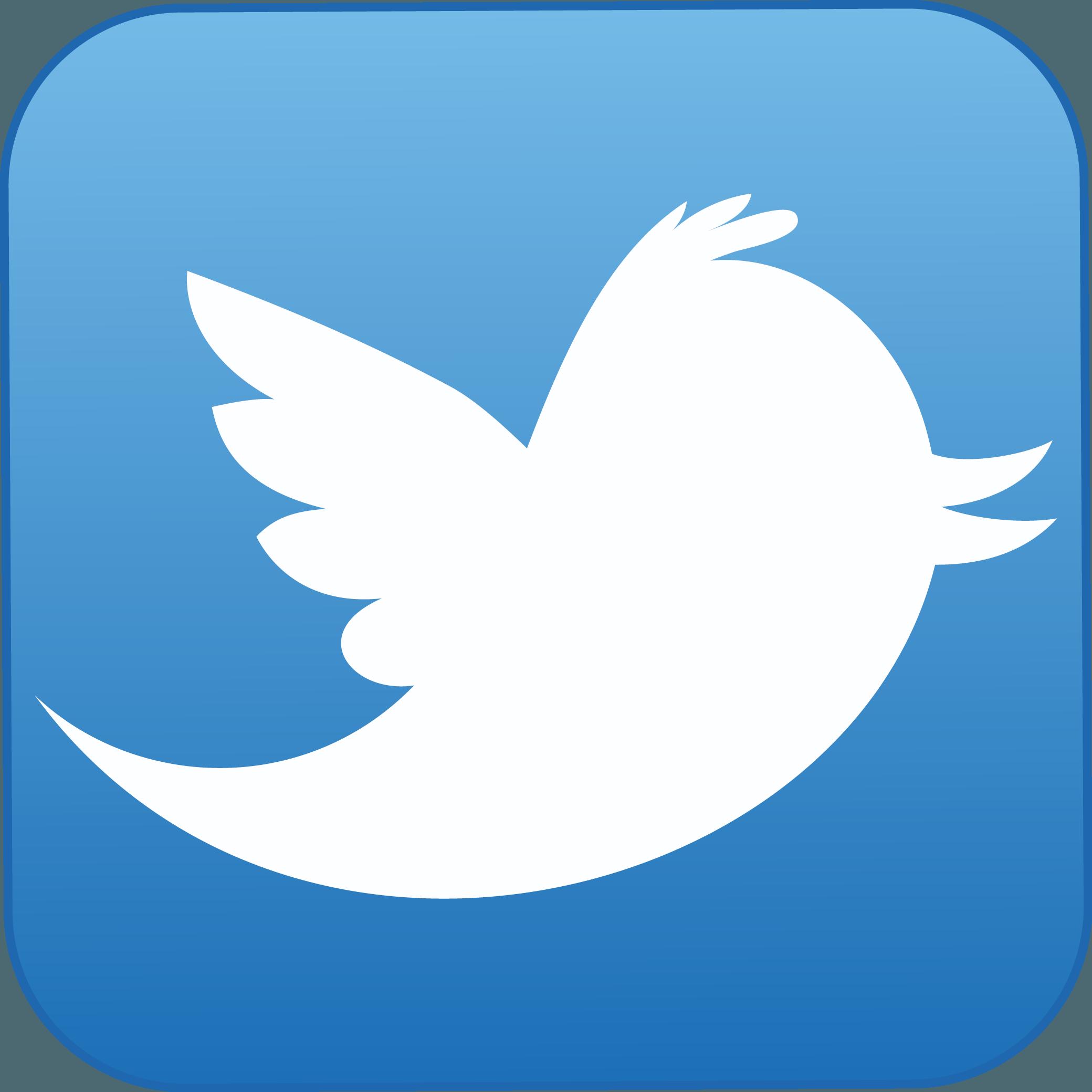 Twitter Logo