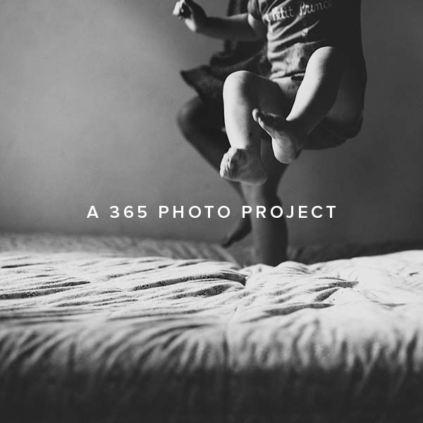 A 365 Photo Project