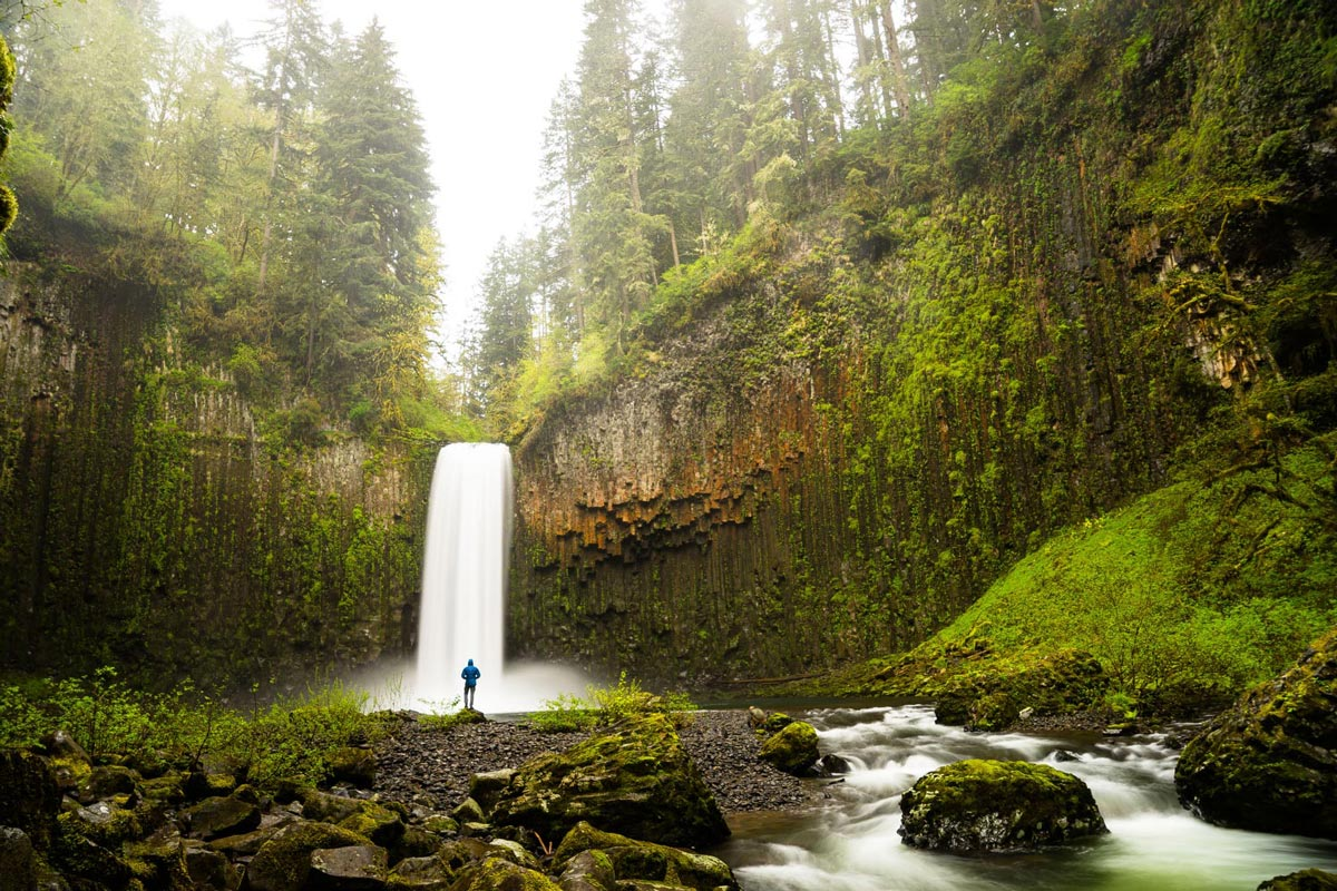 Chris Burkard photo of man standing below a waterfall in a lush green pine forest