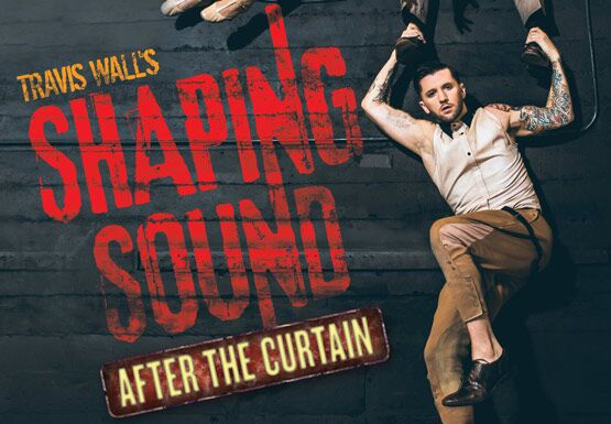 SHAPING SOUND: AFTER THE CURTAIN - VIP EXPERIENCE