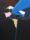The Negative Artist David Acuna