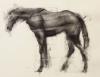 Horse 3-23-17 Artist Daniel Ochoa