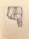 drawing 4-13-17 by Artist Daniel Ochoa
