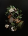 Nature Strikes Back IV Artist David Monllor