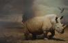 The Last Rhino Artist David Monllor