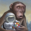 Mind Games by Artist Chris Leib
