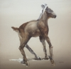 Baby Goat by Artist Daniel Ochoa
