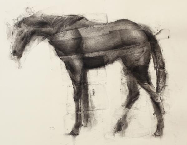 Horse 3-23-17 by Artist Daniel Ochoa