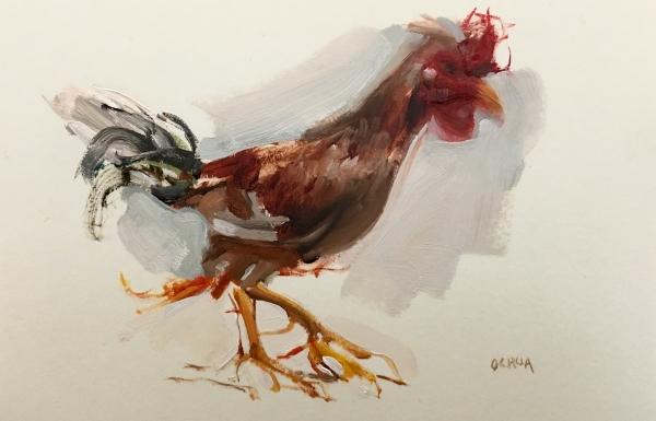 Rooster Study 4-12-18 by Artist Daniel Ochoa