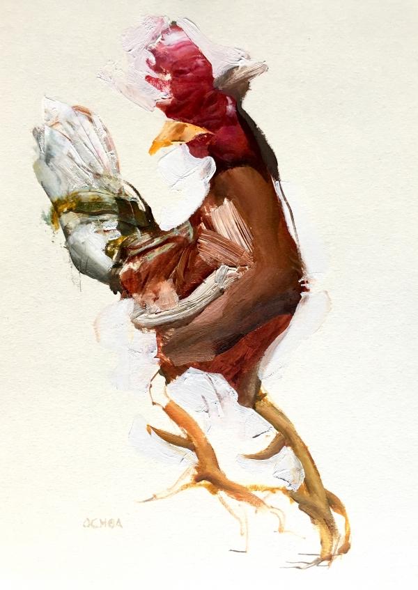 Rooster Study 8-28-18 by Artist Daniel Ochoa