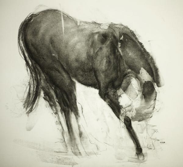 Horse 9-18-17 by Artist Daniel Ochoa