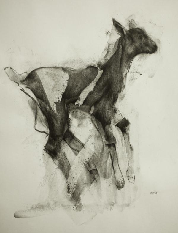Goat 9-28-17 by Artist Daniel Ochoa