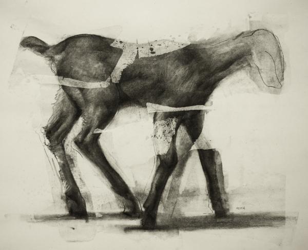 Goat Study 10-11-17 by Artist Daniel Ochoa