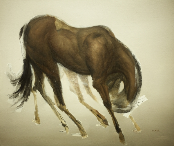 Horse Gesture Study by Artist Daniel Ochoa