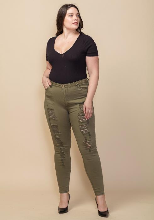 Asoph Plus Size Ripped Skinny Jean