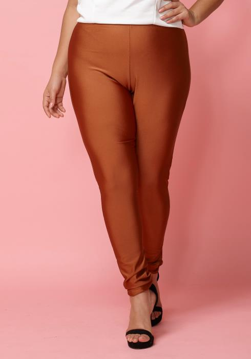 Asoph Plus Size Nylon High-Waist Leggings