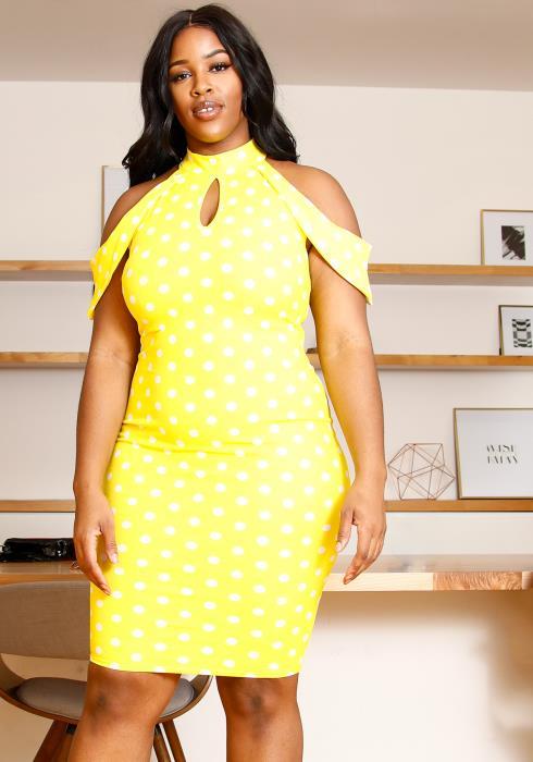Asoph Plus Size Retro Bodycon Dress