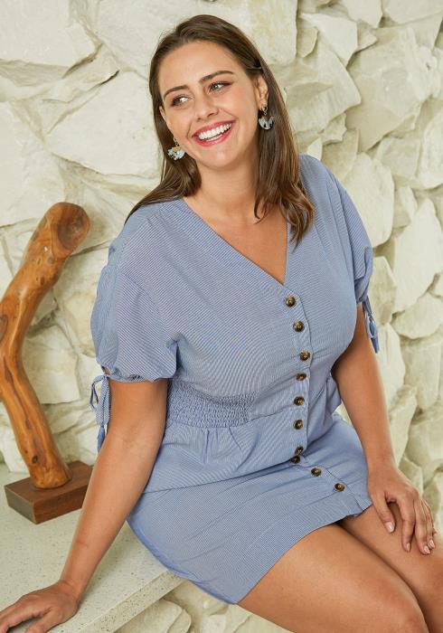 Asoph Plus Size Pinstripe Shirt Dress