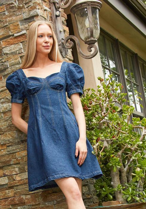 Tansy Sweetheart Denim Mini Dress