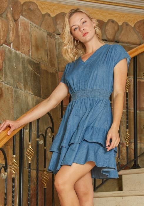 Tansy Denim Flare Dress