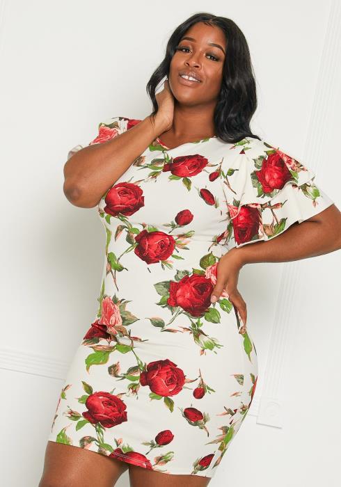 Asoph Plus Size Dozen Roses Dress