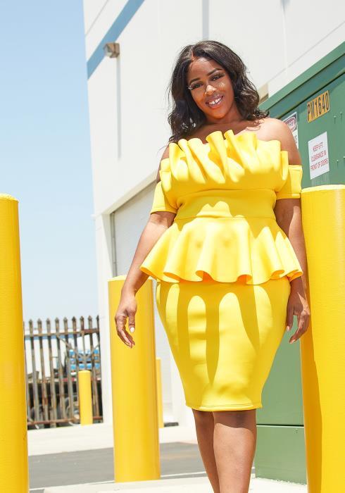 Asoph Plus Size Cup Cake Dress