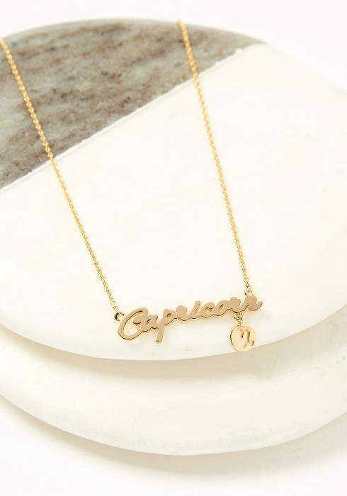 Capricorn Dainty Zodiac Necklace