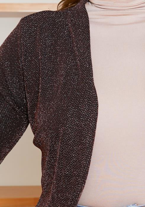 Asoph Plus Size Womens Shimmering Open Front Blazer