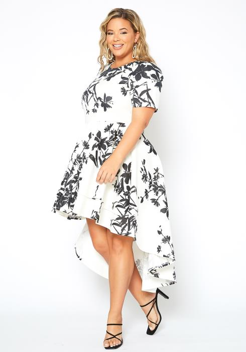 Asoph Plus Size Floral Art Print High Low Flare Dress