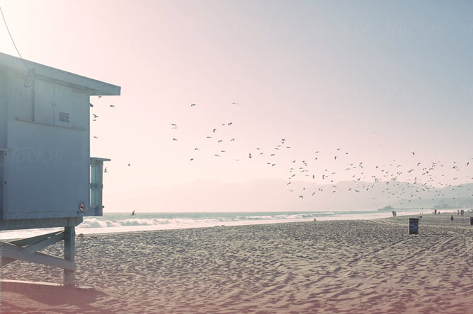 Venice beach in Los Angeles, the home of our video production company.