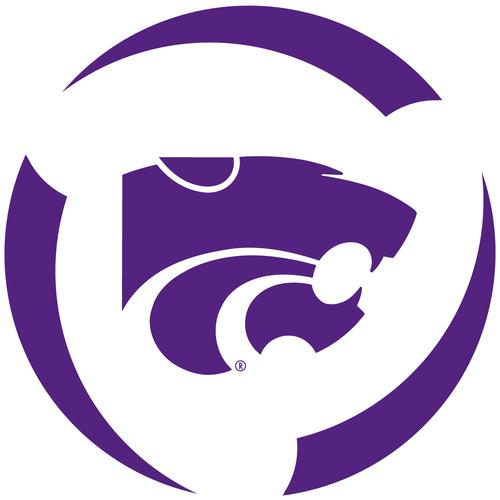 State Wildcats Fidget Spinner