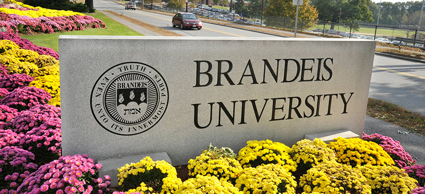 Checkout this video of Brandeis University