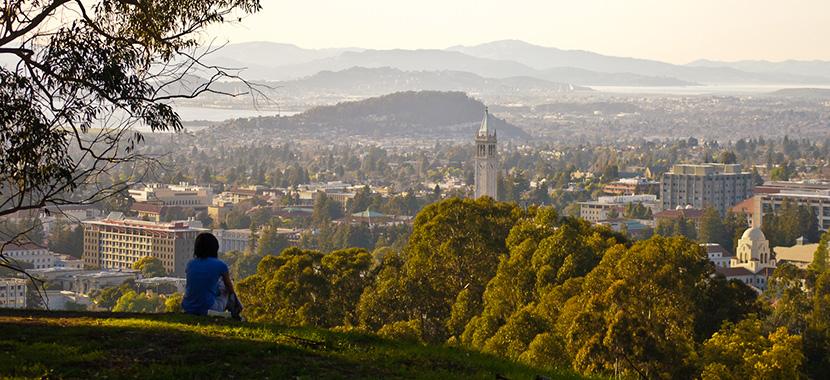 Studying at Iran or applying for Berkeley university?