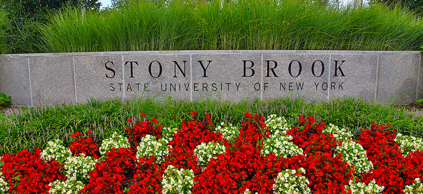 Stony Brook Tuition Per Year