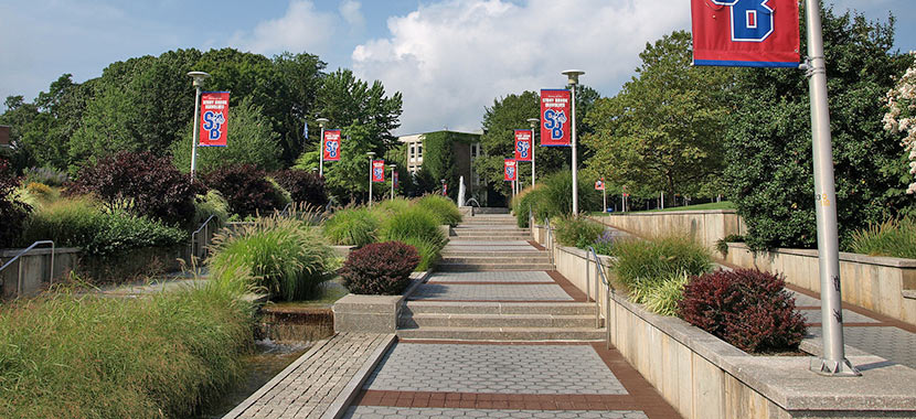 Stony brook research opportunities-8484