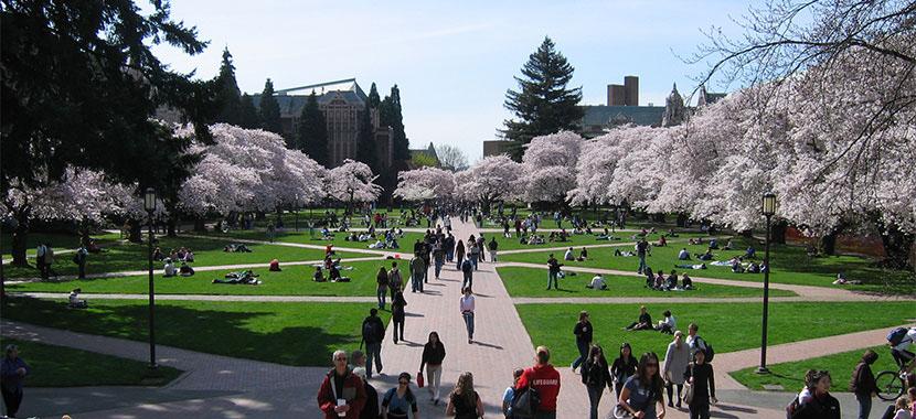 Seattle University