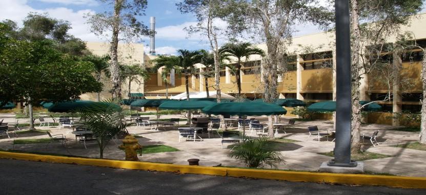 Universidad Central Del Caribe Overview Plexuss Com