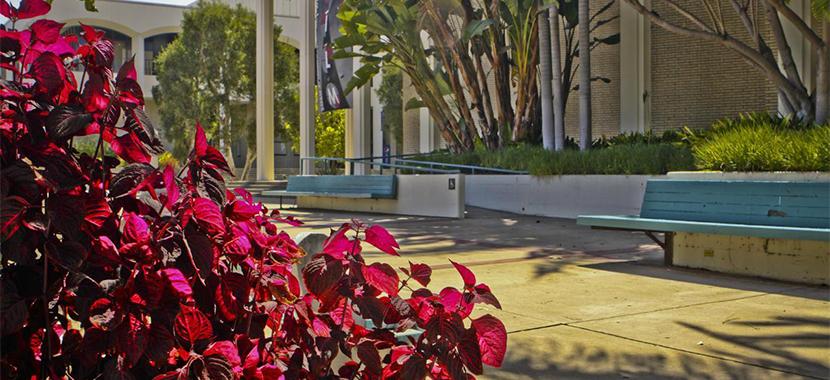 Explore San Diego State University