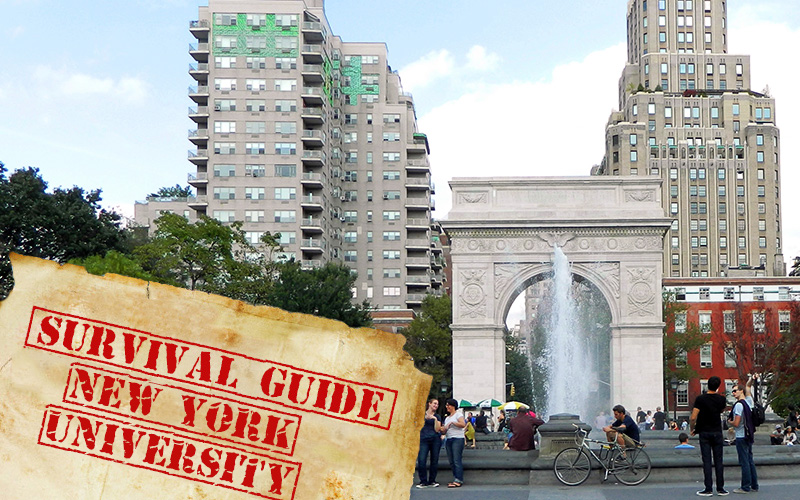 New York University   Survival Guide