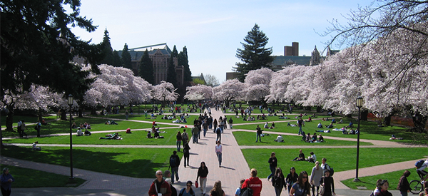 University of Washington Seattle Campus