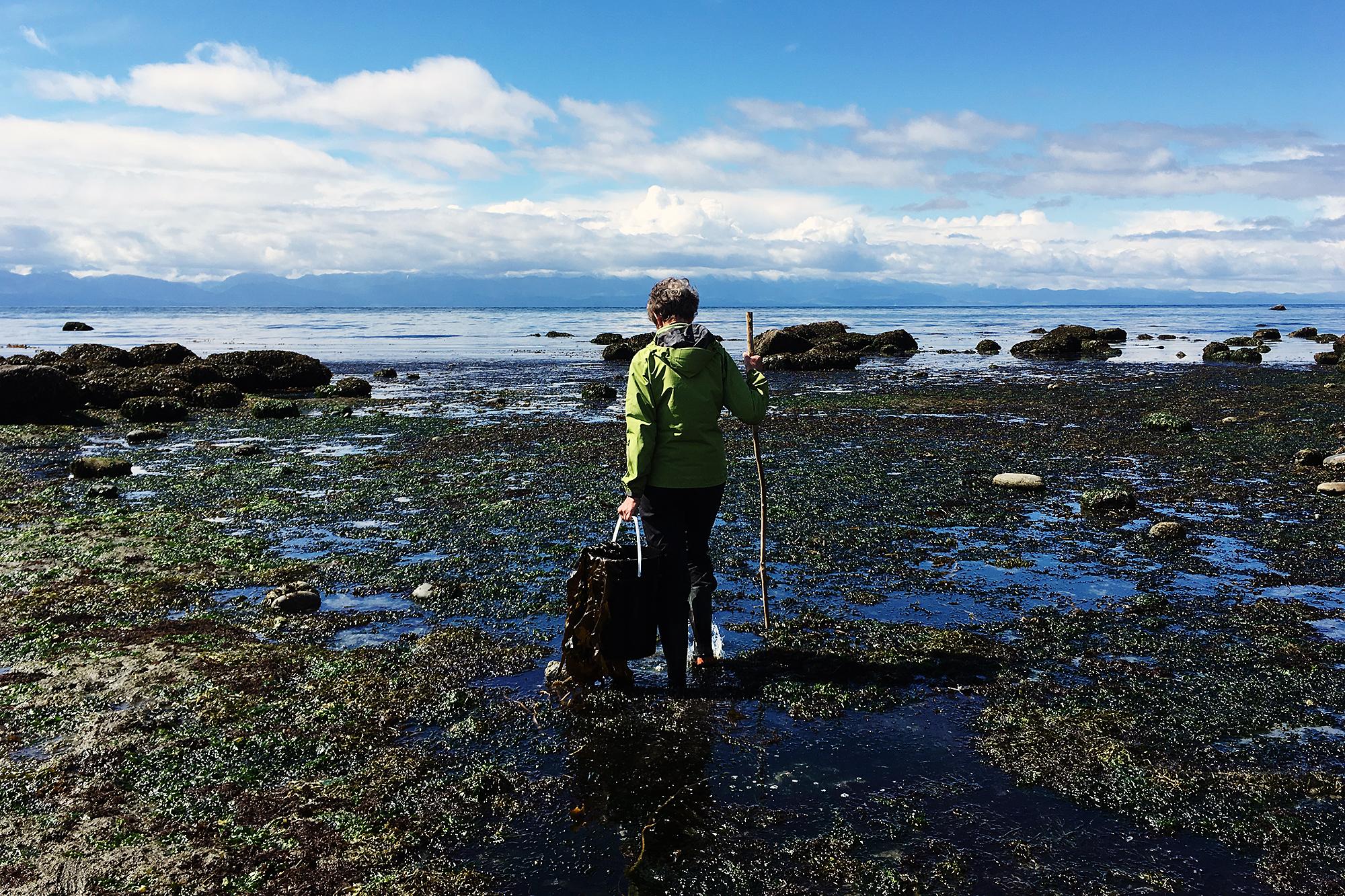 KNKX Salish Sea