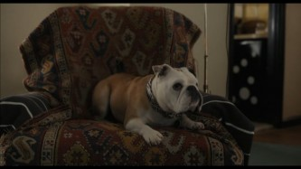 Clip: Ohio Blue Tip Matches